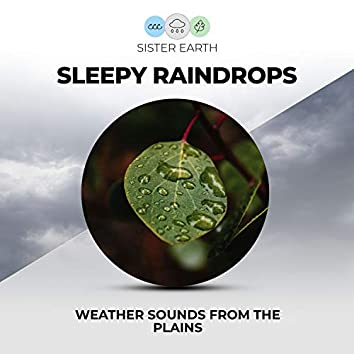 Sleepy Raindrops Weather Sounds from the Plains