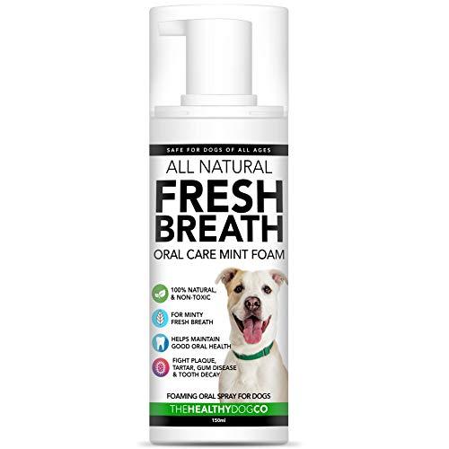 100% Natürlicher Atemfrischer Schaum und Wasserzusatz für Hunde | Schäumende Mundhygiene | Wirksame gegen Mundgeruch und Ablagerungen | Einfacher als Hundezahnpasta | Praktisch im Pumpenformat