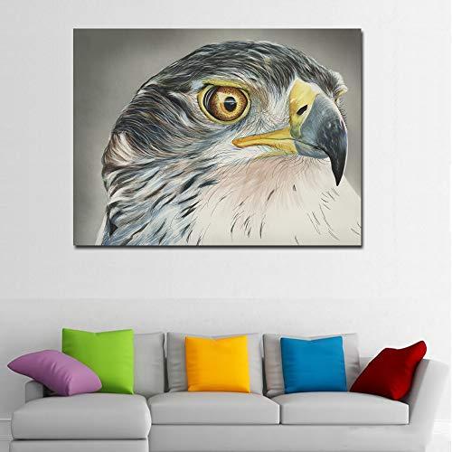 TYLPK Tier Falcon Kopf Malerei Poster Druck Wandkunst Leinwand Malerei Wohnzimmer Home Decoration Wandbild A6 70X100cm