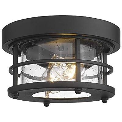 Emliviar 2-Light Round Ceiling Light Fixture, Farmhouse Flush Mount Ceiling Light 11 Inch, Black Finish, WE2085F BK