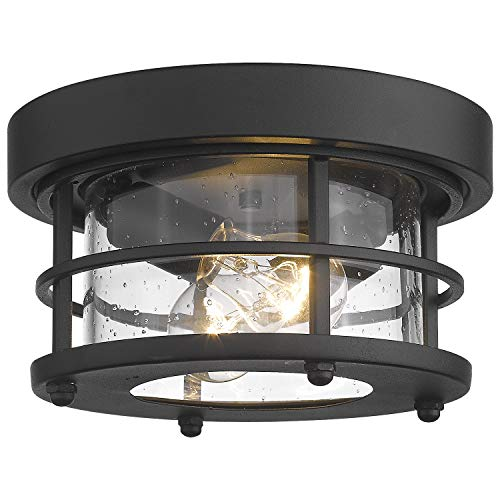 Emliviar 2-Light Round Ceiling Light Fixture, Farmhouse Flush Mount Ceiling Light 10 Inch, Black Finish, WE2085F BK