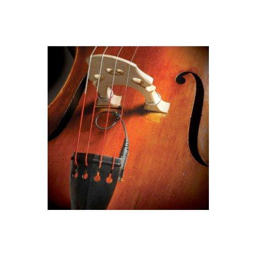 The Realist RLSTSWB1Orchestral Bass Transducer w/ Wood Element