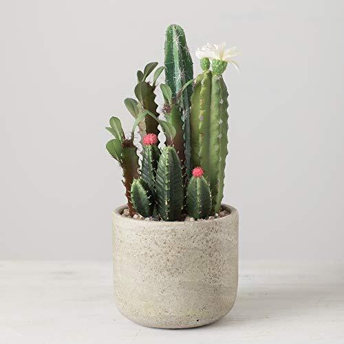 "Sullivans Artificial Flowering Cactus Arrangement in Distressed Cement Pot, 10.5"" (DOT123)"