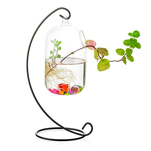 Glas Hängen Fisch Schüssel Tank Beta Wand Tank Mit Ständer Fish Homes Kreative Vase Aquarium Für Hausgarten Schreibtisch Betta Fish Moss