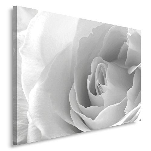 Feeby Frames, Cuadro en lienzo, Cuadro impresión, Cuadro decoración, Canvas 40x50 cm, ROSA, BLANCO, GRIS