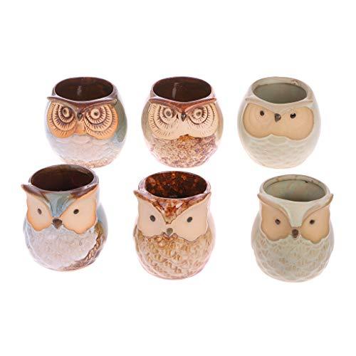 KOFUN Lot de 6 mini pots de fleurs en céramique en forme de hibou - Pour la maison, le bureau, le jardin
