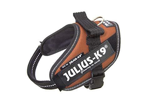 Julius-K9, IDC Powergeschirr, Größe: XS / Mini-Mini, Kupferorange