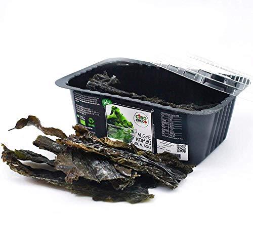 alga kombu