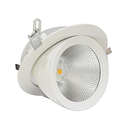 Vision-EL 77671 Spot LED Escargot Rond Inclinable et Orientable avec Alimentation Electronique, Verre/Aluminium, 20 W, Blanc, (H x Ø)-154 x 180 mm