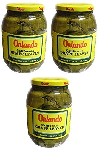 Orlando Max 57% OFF - California Grape Leaves 2 Pack 3 Jars 16 oz. Wholesale of