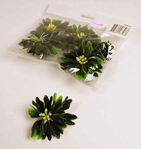 E+N Wasser-Pflanze Teich-Planze Schwimm-Pflanze Deko Mini-Gardening Mini-Garten Feen-Garten grün, Kunststoff, Ø: 5cm, 6 Stück im Pack