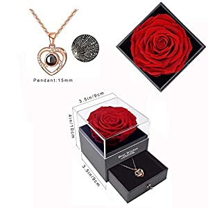 eternal rose, real rose handmade forever rose flower preserved rose gift box with necklace in jewelry box romantic gift for her valentine's day mother's day birthday (red/loveyou necklack) silk flower arrangements