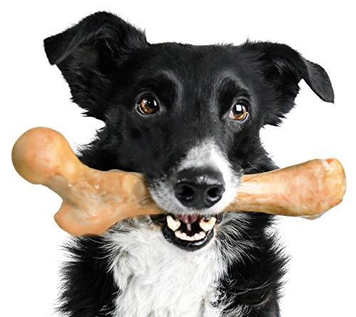 Pet Qwerks Wildschwein-Bellknochen-Geschmack – für aggressive Kauer, robust, langlebig, extrem starkes Kauspielzeug, unzerstörbar, hergestellt in den USA, FDA-konformes Nylon, X Large, braun