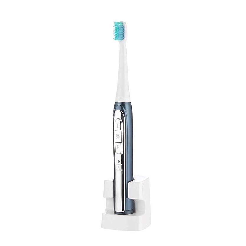 オッズ小説家効果電動歯ブラシ、インテリジェントソニック振動歯ブラシ、ホワイトニング電動歯ブラシ、誘導充電、防水