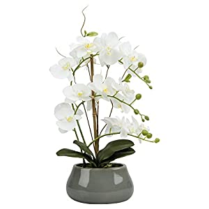 LIVILAN Artificial Flowers Fake Silk Orchid Phalaenopsis Plants Large with Ceramic Vase for Home Decor Office Table Centerpieces Wedding Party