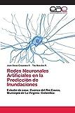 Redes Neuronales Artificiales en la Predicción de Inundaciones: Estudio de caso: Cuenca del Río Cauca, Municipio de La Virginia -Colombia-