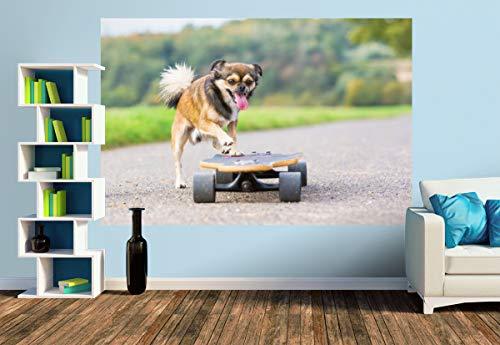 Premium Foto-Tapete Hund mit Skateboard (versch. Größen) (Size M | 279 x 186 cm) Design-Tapete, Wand-Tapete, Wand-Dekoration, Photo-Tapete, Markenqualität von ERFURT