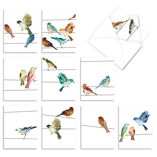 The Best Card Company - 10 Watercolor Blank Note Cards Assorted (4 x 5.12 Inch) - All Occasion Bird Cards Bulk - High Wire Birds M3318