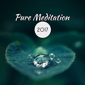 Pure Meditation 2017