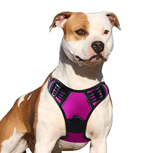 Eagloo Dog Harness No Pull, Walking Pet Harness with 2 Metal Rings and Handle Adjustable Reflective Breathable Oxford Soft Vest Easy Control Front Clip Harness Outdoor for Small Dogs Rose Red