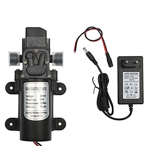 TYTG Bomba de Transferencia de líquido Bomba de Agua de diafragma Micro eléctrica de 12V 60W, Interruptor automático, Bomba de Agua de Lavado de Autos de Alta presión, Accesorios para Bombas