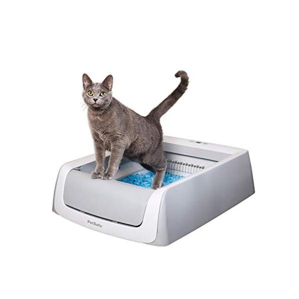 PetSafe ScoopFree Automatic Self-Cleaning Cat Litter Box – Original Purple...