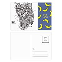 ヒトのペンキの静かな赤ちゃん猫 バナナのポストカードセットサンクスカード郵送側20個