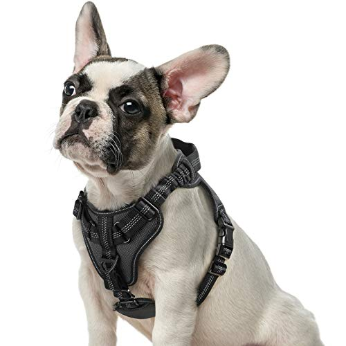 rabbitgoo Dog Harness No Pull, Adjustable Dog Walking Harness with 2 Metal Clips & Shock-Absorbing Bungee Straps, Soft Padded Pet Vest Chest Harness Reflective with Handle for Medium Dogs (Black, M)