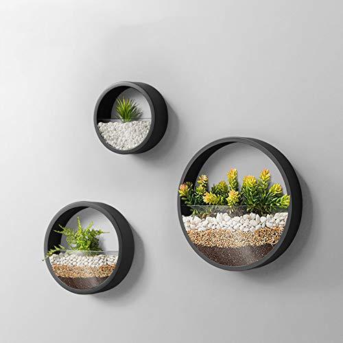 KNIKGLASS 3 Stück/Set Wandvasen Deko Übertopf für Zimmerpflanzen Sukkulenten Luftpflanzen Kakteen Kunstpflanzen und Mehr, Metall (Schwarz)
