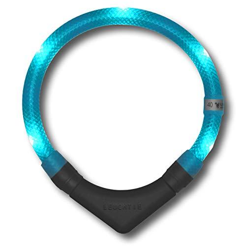 LEUCHTIE® Leuchthalsband Plus türkis Größe 52,5 I LED Halsband für Hunde I 100 h Leuchtdauer I wasserdicht I enorm hell
