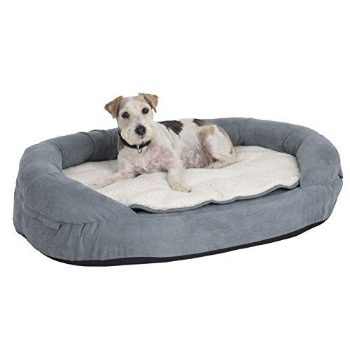 Zooplus Hundebett aus Memory-Schaum mit Nackenrolle, strapazierfähig, oval, groß