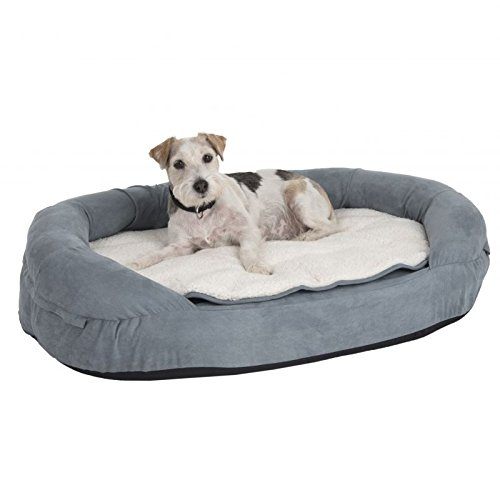 zooplus Hundebett aus Memory-Schaum mit Nackenrolle Bordüre Heavy Duty Oval Shaped