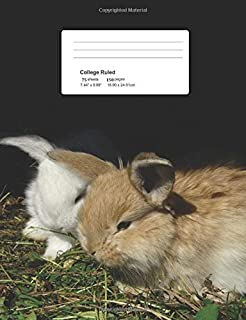 Baby Bunnies: Composition Notebook with Blank College-Ruled Lined Paper.