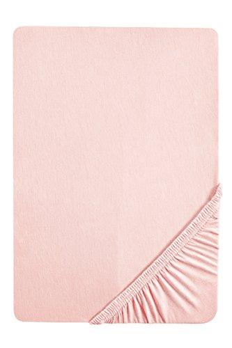 biberna 0077144 Feinjersey Spannbetttuch (Matratzenhöhe max. 22 cm) (Baumwolle) 90x190 cm -> 100x200 cm, rose