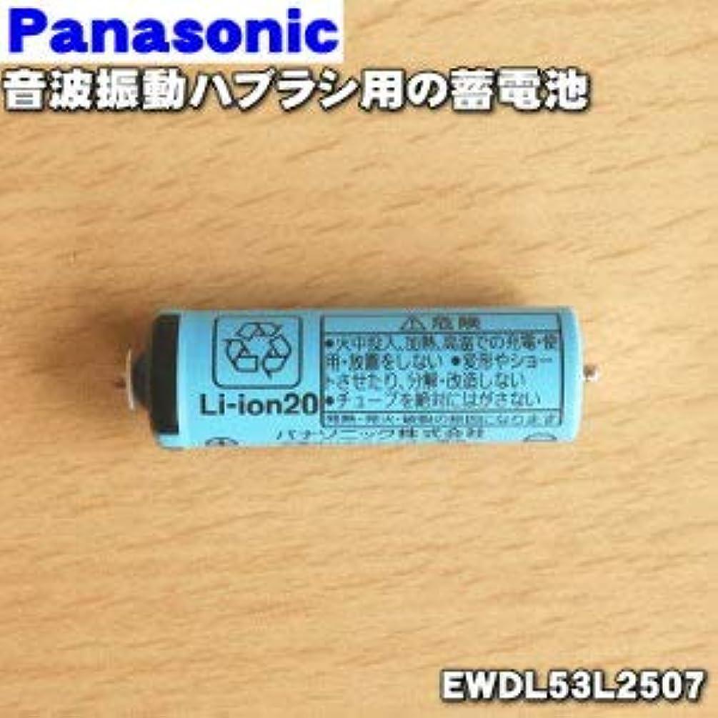 パナソニック Panasonic 音波振動ハブラシ Doltz 蓄電池交換用蓄電池 EWDL53L2507