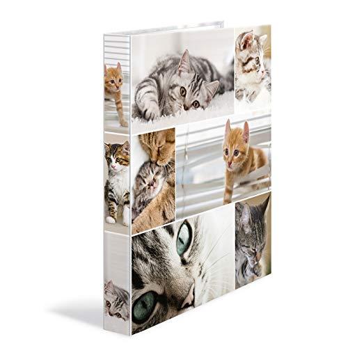 HERMA 19359 Ringbuch DIN A4 Tiere Katzen, schmal, 4 Ringe, stabile Pappe, 35 mm breit, farbiger Innen- und Außendruck im hochwertigen Design, Motiv Ringbuchordner, Ringbuchmappe