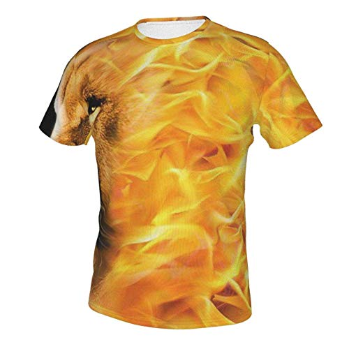 Basic Short Sleeve T-Shirts Tops for Youth & Adult Men Boys, Big and Tall Size Burning Flaming Fire Lion King 2XL
