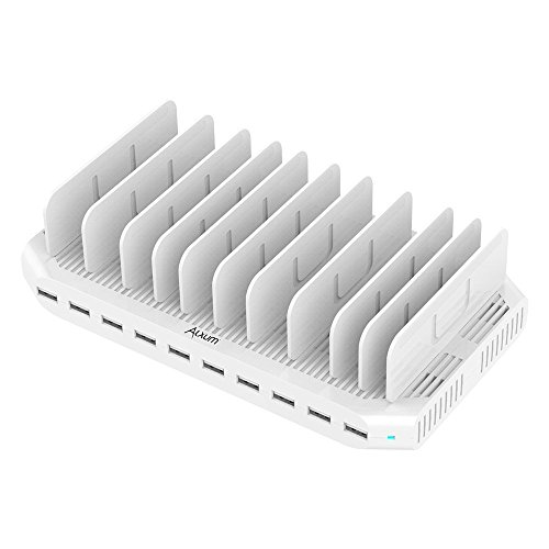iPad Charging Station 96W 10-Port Alxum USB Charging Station Multiple Device USB Charger with Smart IC Tech, Organizer Stand for iPhone X, Xs Max,8,7,6, Samsung Google Nexus LG, Tablets, White