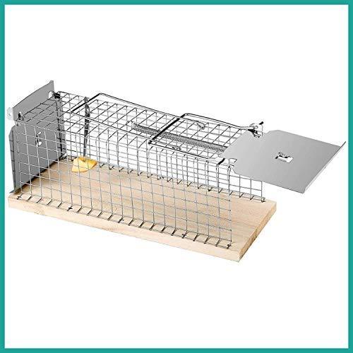 Praknu Rattenfalle Lebendfalle 30cm Groß - Effektiv und Robust - für Wühlmause und Ratten
