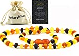 RAW Baltic Amber Necklace -Natural Amber from Baltic Region, Genuine Amber (13in.)