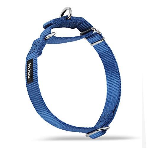Hyhug Design Metallzubehör einfarbiges Nylonhalsband, Martingale Hundehalsband.(Mittel, Klassisches Blau)