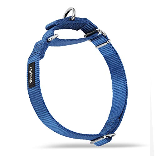 Hyhug Pets Premium Upgraded Durable Nylon Anti-Escape Martingale Collar for Boy...