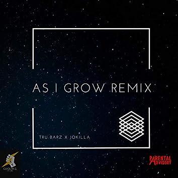 As I Grow (feat. Jokilla)