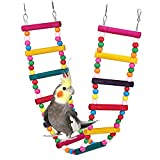 ASOCEA Bird Parrot Ladders Hanging Toys Pet Swing Bridge Climbing Toys Standing Hammock Cage Accessories for Small Medium Chicken Lovebirds Cockatiel Conure Parakeet Finches Trainning Playing