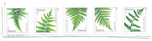 USPS Ferns Forever Stamps - 20 Stamps