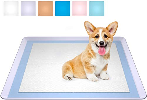 Use Puppy Pad or Not