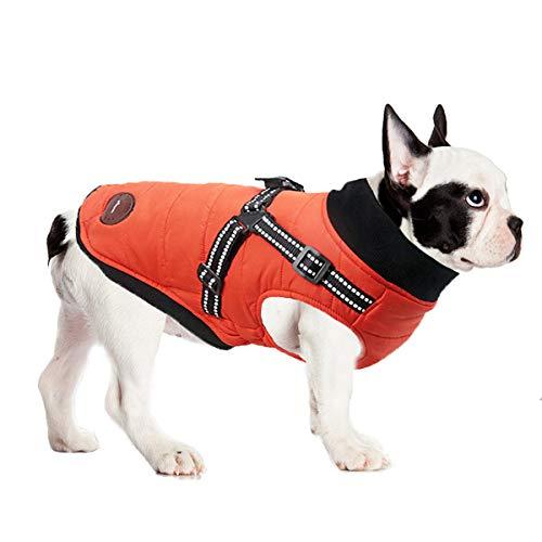 ubest Winter Hundemantel mit Hundegeschirr, Baumwolle Gefütterte Hundejacke Warm Winterjacke Wintermantel für Kleine Hunde, Orange, L