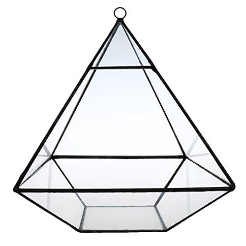 Baoblaze Mini Glas Terrarium Geometrisches Glas Pflanzkübel Pflanzgefäße Blumenkübel Sukkulente Pflanzen Pflanzgefäß Deko - durchsichtig, 155*155*190MM