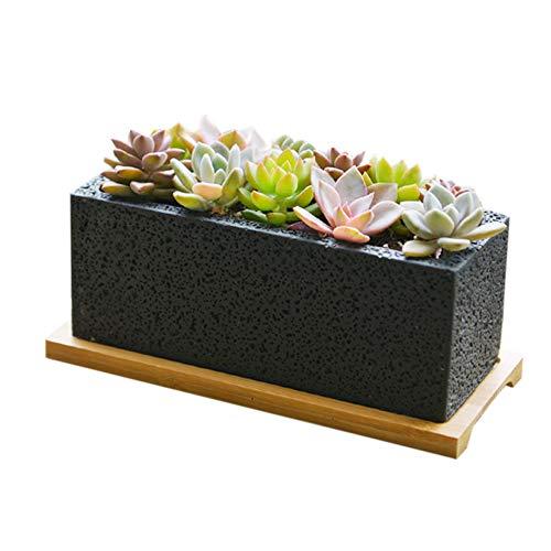 Nattol Modern Design 2.5 Inch Mini Wit Vierkante Cement Succclents Container/Cactus Planter Pot met een Verwijderbare Bamboe Schotellade, Set van 3 (wit) S Black24-aa