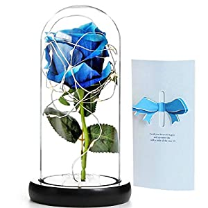 SWEETIME Beauty and The Beast Rose, Enchanted Silk Rose with Led Light in Glass Dome, Led Glass Rose Gift Package, Gifts for Anniversary, Wedding,Mom Gift,Mathers Day.